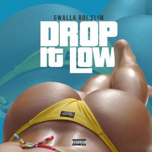 Drop it Low artwork